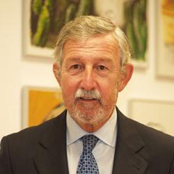 Jesús Pellón Fernández-Fontecha